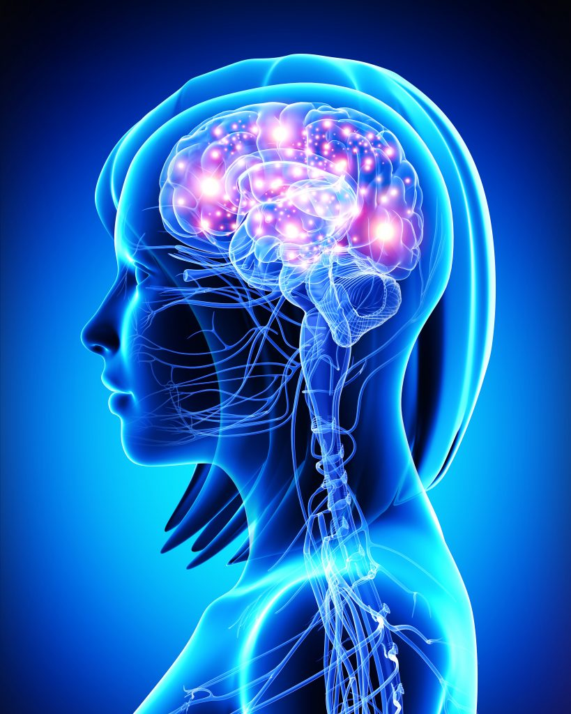 Brain and Concussion Body Chiropractic